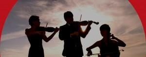 festival-castelbarry-sarasota-violon-300x117