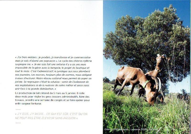 pastoralisme-11