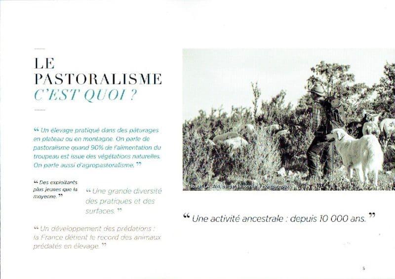 pastoralisme-5
