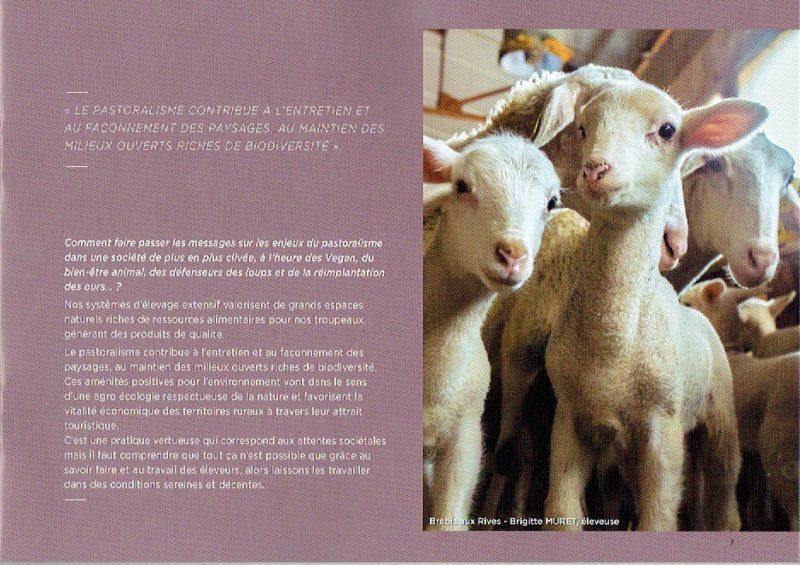 pastoralisme-7